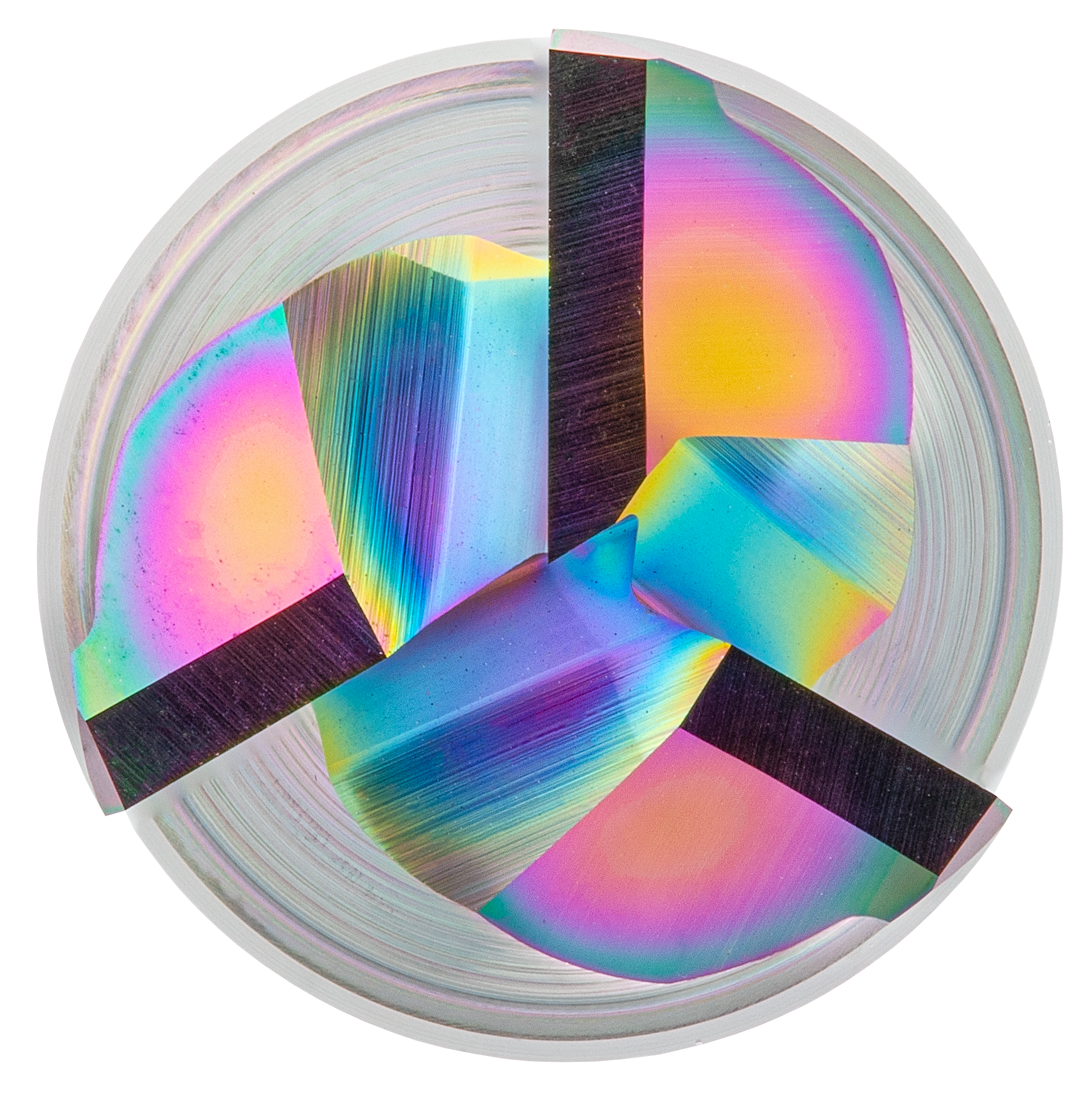 EXN1-M01-0113