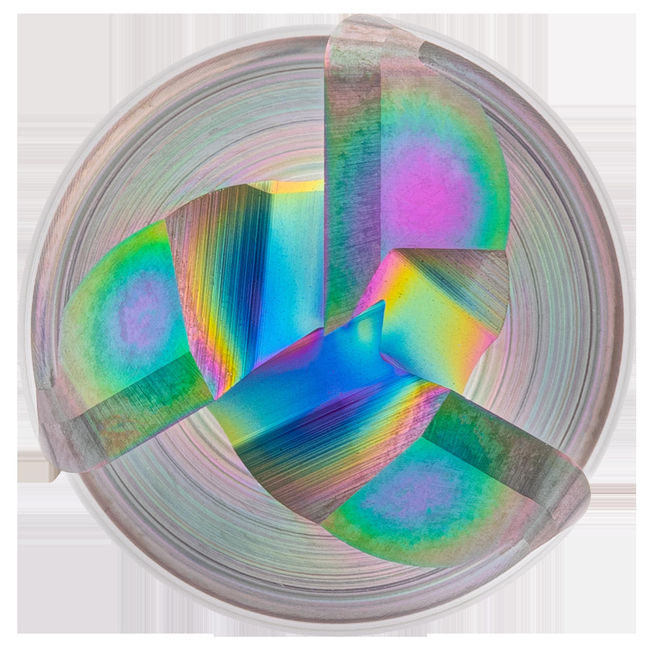 EXN1-M06-0003