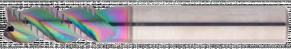 EXN1-M02-0123
